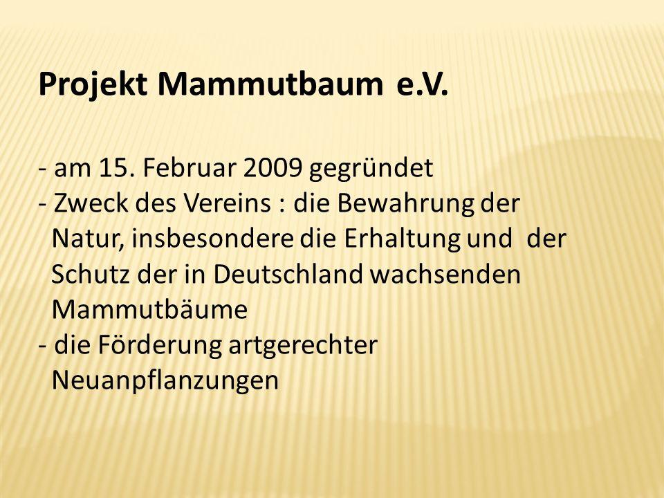 Projekt Mammutbaum e.V. - am 15. Februar 2009 gegründet - Zweck des Vereins : die Bewahrung der Natur, insbesondere die Erhaltung und der Schutz der i