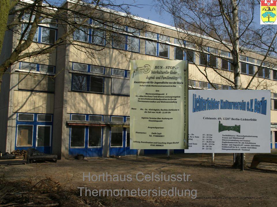 Bezirksamt Steglitz-Zehlendorf, Jugendamt, Jug 7000