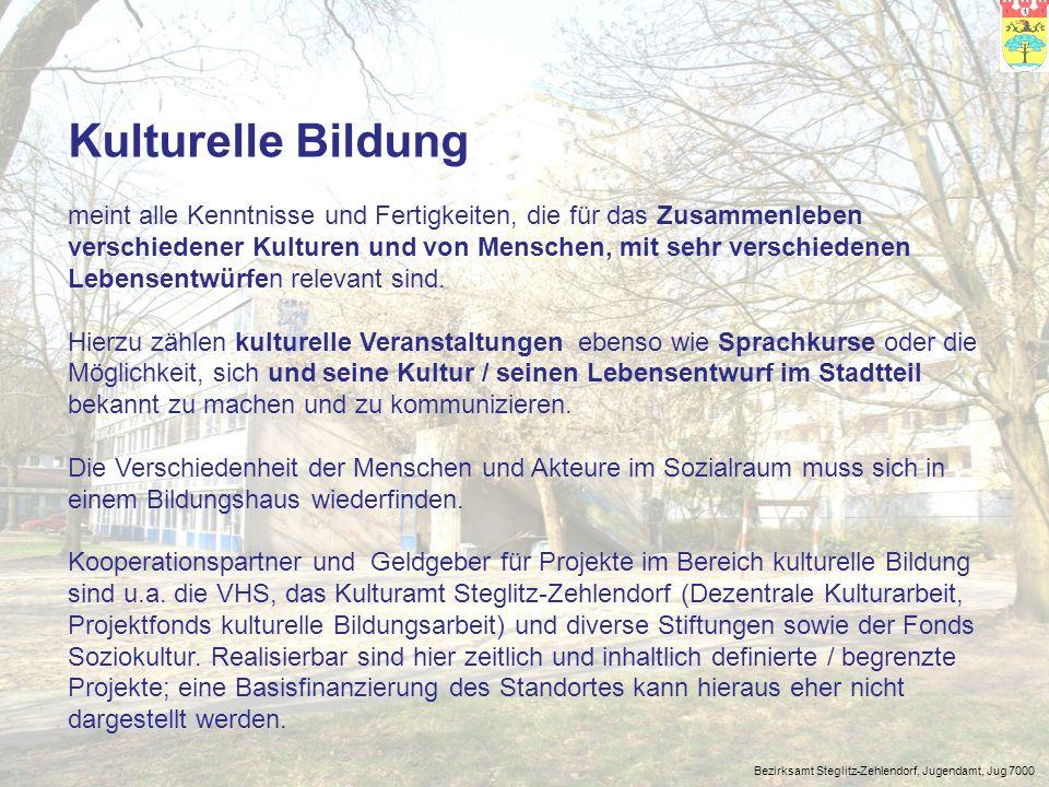 Bezirksamt Steglitz-Zehlendorf, Jugendamt, Jug 7000 Leben im Gemeinwesen umfasst solche Bildungs- und Lernfelder, die die Kompetenzen ausbilden und befördern, die für friedliches, solidarisches und eigenverantwortliches Leben von Bedeutung sind.