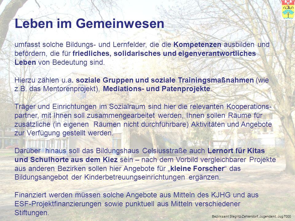 Bezirksamt Steglitz-Zehlendorf, Jugendamt, Jug 7000 Geld verdienen ist der dritte Bereich, der in der Angebotspalette des Bildungshauses von großer Bedeutung sein wird.