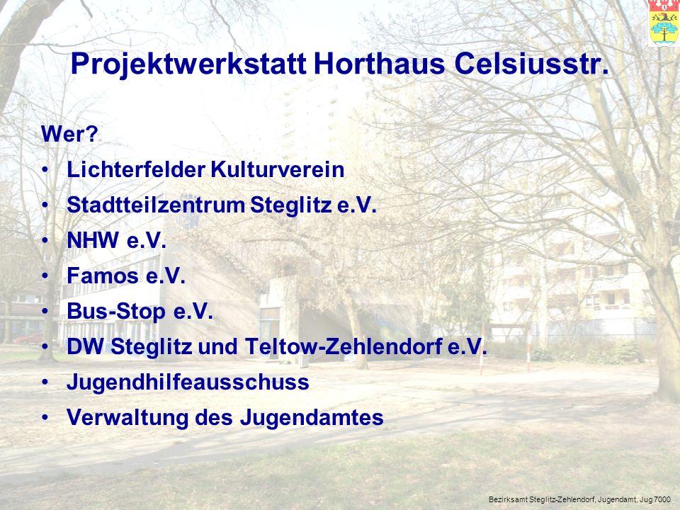 Bezirksamt Steglitz-Zehlendorf, Jugendamt, Jug 7000 Projektwerkstatt Horthaus Celsiusstr.