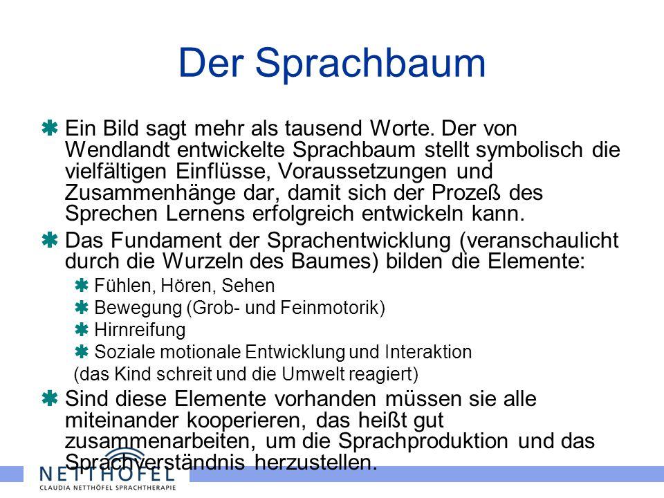 Der Sprachbaum Ein Bild sagt mehr als tausend Worte. Der von Wendlandt entwickelte Sprachbaum stellt symbolisch die vielfältigen Einflüsse, Voraussetz