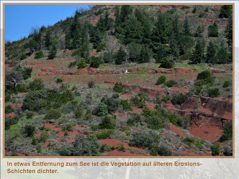 In ein paar tausend Jahren werden diese Hügel sicher dicht bewaldet sein und das heutige feste Gestein wird durch Verwitterung, durch den Einfluß des