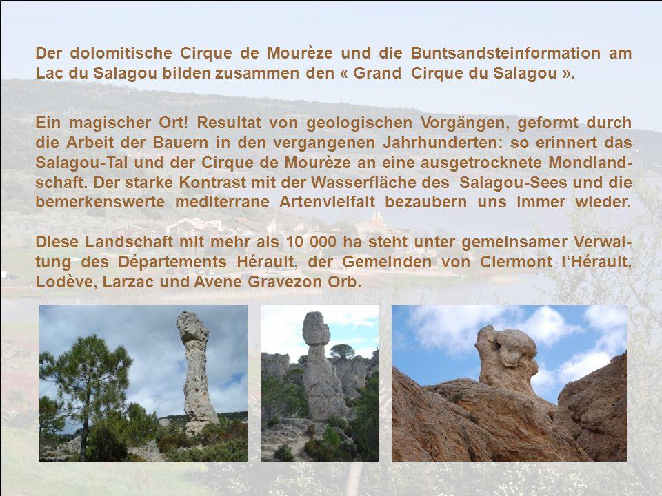 Im Frühjahr, während unseres Urlaubs im Hérault, haben wir den Cirque de Mourèze ent- deckt, ein Felsenmeer aus grau- em Dolomitstein, das mit seinen