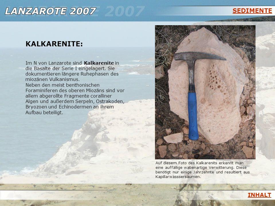 SEDIMENTE KALKARENITE: Im N von Lanzarote sind Kalkarenite in die Basalte der Serie I eingelagert. Sie dokumentieren längere Ruhephasen des miozänen V