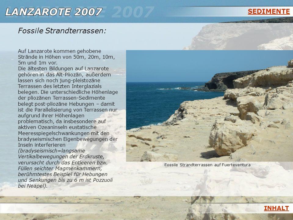 SEDIMENTE Fossile Strandterrassen: Auf Lanzarote kommen gehobene Strände in Höhen von 50m, 20m, 10m, 5m und 1m vor. Die ältesten Bildungen auf Lanzaro