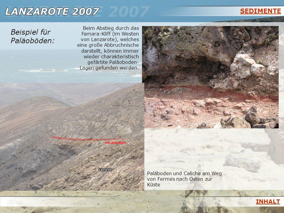 SEDIMENTE Beispiel für Paläoböden: Beim Abstieg durch das Famara-Kliff (im Westen von Lanzarote), welches eine große Abbruchnische darstellt, können i