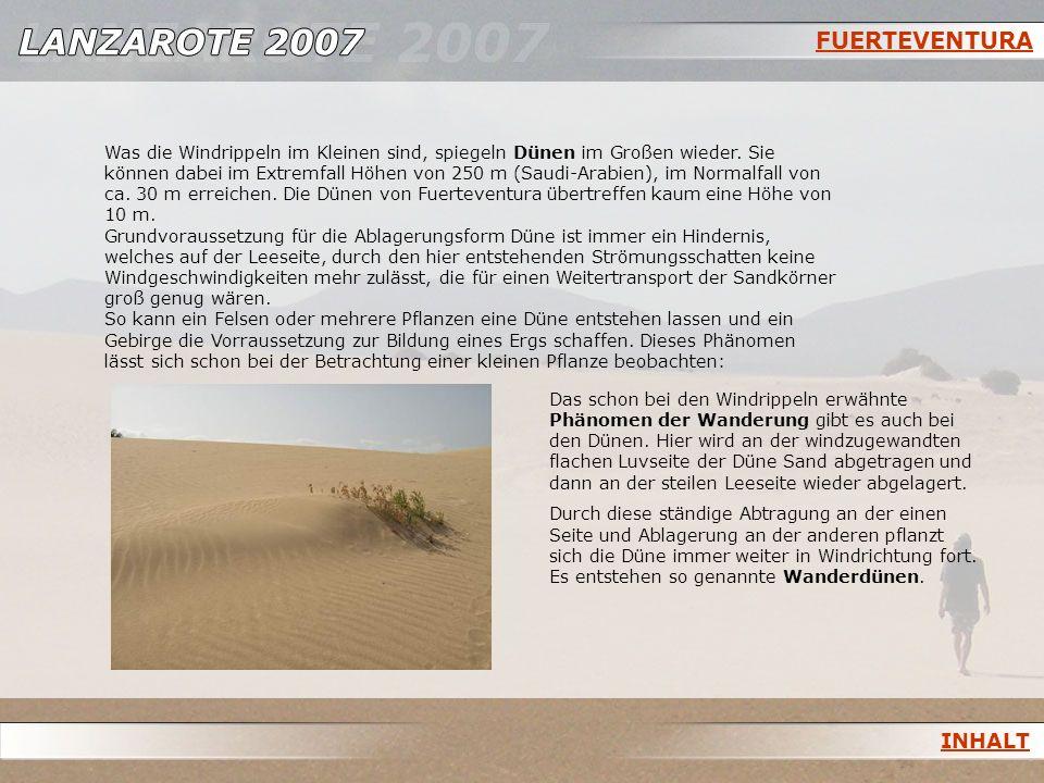 FUERTEVENTURA Was die Windrippeln im Kleinen sind, spiegeln Dünen im Großen wieder. Sie können dabei im Extremfall Höhen von 250 m (Saudi-Arabien), im