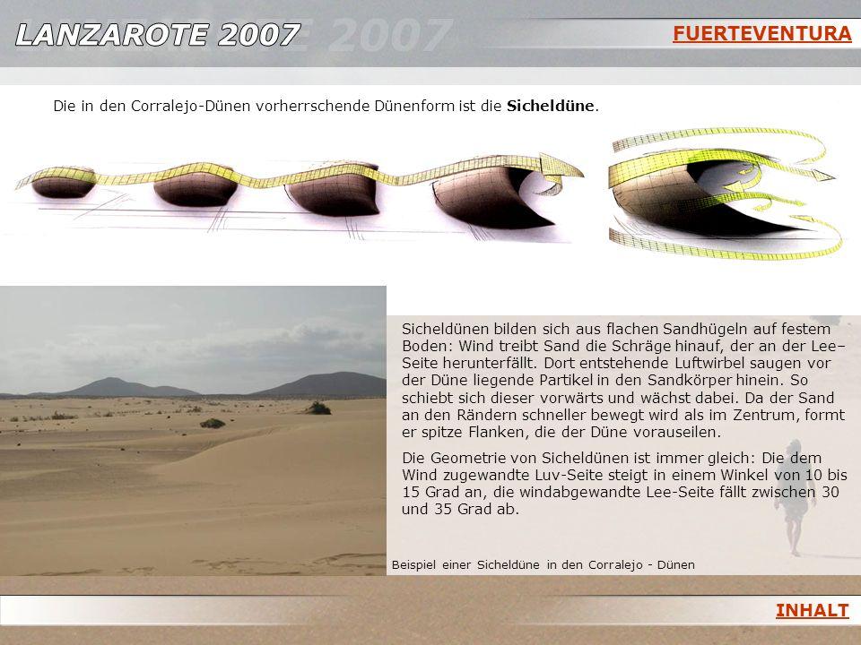 FUERTEVENTURA Beispiel einer Sicheldüne in den Corralejo - Dünen Sicheldünen bilden sich aus flachen Sandhügeln auf festem Boden: Wind treibt Sand die