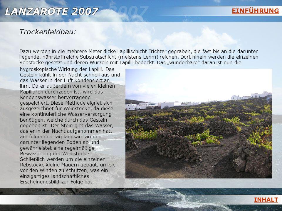 GEOLOGISCHE GLIEDERUNG a.Basalte der Serie IBasalte der Serie I b.Basalte der Serie IIBasalte der Serie II c.Basalte der Serie III & IVBasalte der Serie III & IV d.Vulkanische & chemische Entwicklung der KanarenVulkanische & chemische Entwicklung der Kanaren Lanzarote besteht fast ausschließlich aus Basalten.