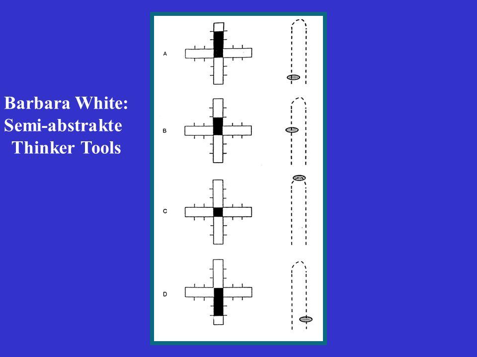 Barbara White: Semi-abstrakte Thinker Tools
