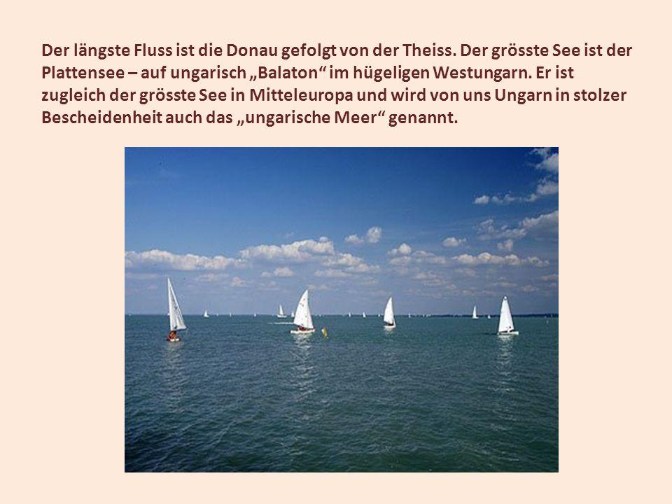 Der längste Fluss ist die Donau gefolgt von der Theiss. Der grösste See ist der Plattensee – auf ungarisch Balaton im hügeligen Westungarn. Er ist zug