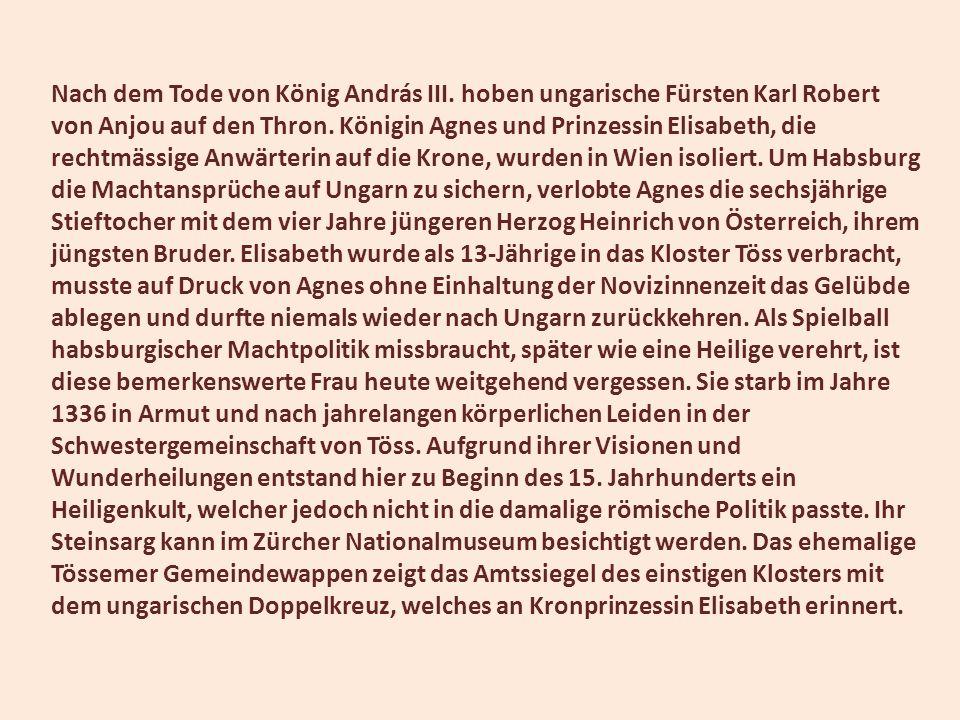 Nach dem Tode von König András III. hoben ungarische Fürsten Karl Robert von Anjou auf den Thron. Königin Agnes und Prinzessin Elisabeth, die rechtmäs
