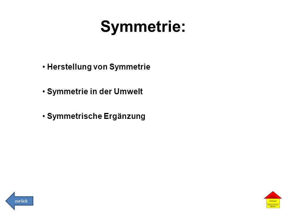 Symmetrie: Herstellung von Symmetrie Symmetrie in der Umwelt Symmetrische Ergänzung zurück