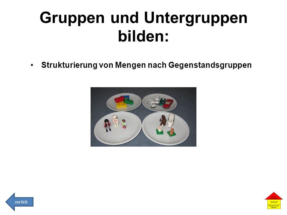 Gruppen und Untergruppen bilden: Strukturierung von Mengen nach Gegenstandsgruppen zurück