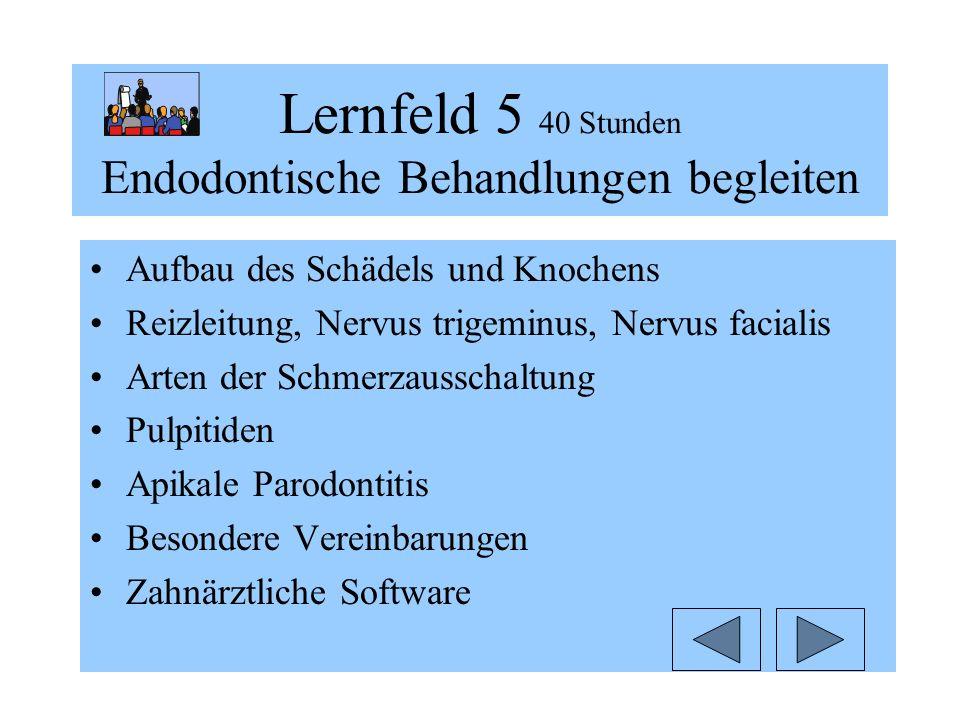 Lernfeld 5 40 Stunden Endodontische Behandlungen begleiten Aufbau des Schädels und Knochens Reizleitung, Nervus trigeminus, Nervus facialis Arten der Schmerzausschaltung Pulpitiden Apikale Parodontitis Besondere Vereinbarungen Zahnärztliche Software
