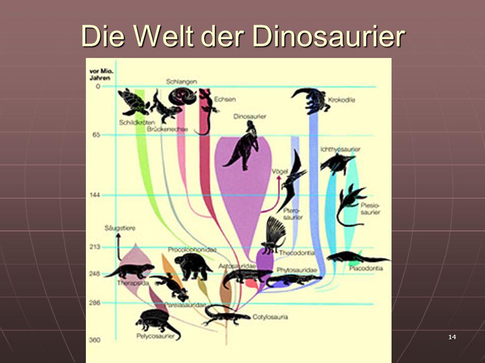 14 Die Welt der Dinosaurier