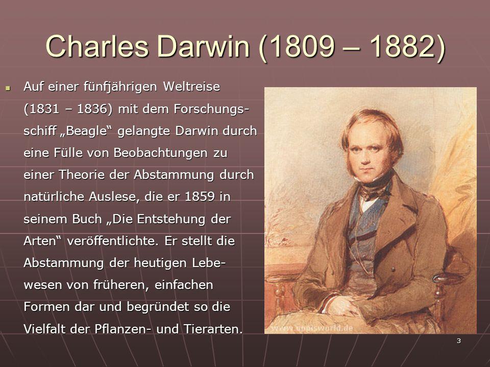 3 Charles Darwin (1809 – 1882) Auf einer fünfjährigen Weltreise (1831 – 1836) mit dem Forschungs- schiff Beagle gelangte Darwin durch eine Fülle von B
