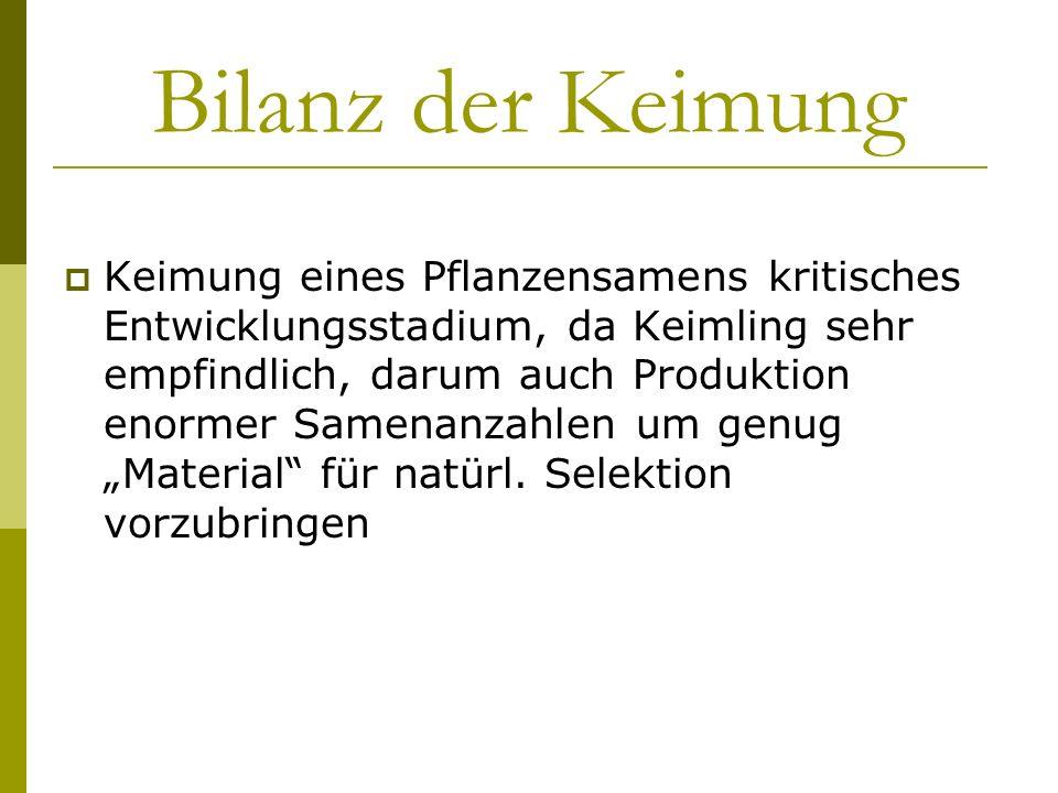 Bilanz der Keimung Keimung eines Pflanzensamens kritisches Entwicklungsstadium, da Keimling sehr empfindlich, darum auch Produktion enormer Samenanzah