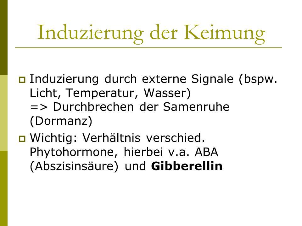 Gibberellin