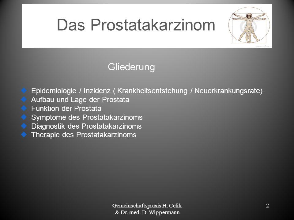 2 Gliederung Epidemiologie / Inzidenz ( Krankheitsentstehung / Neuerkrankungsrate) Aufbau und Lage der Prostata Funktion der Prostata Symptome des Pro