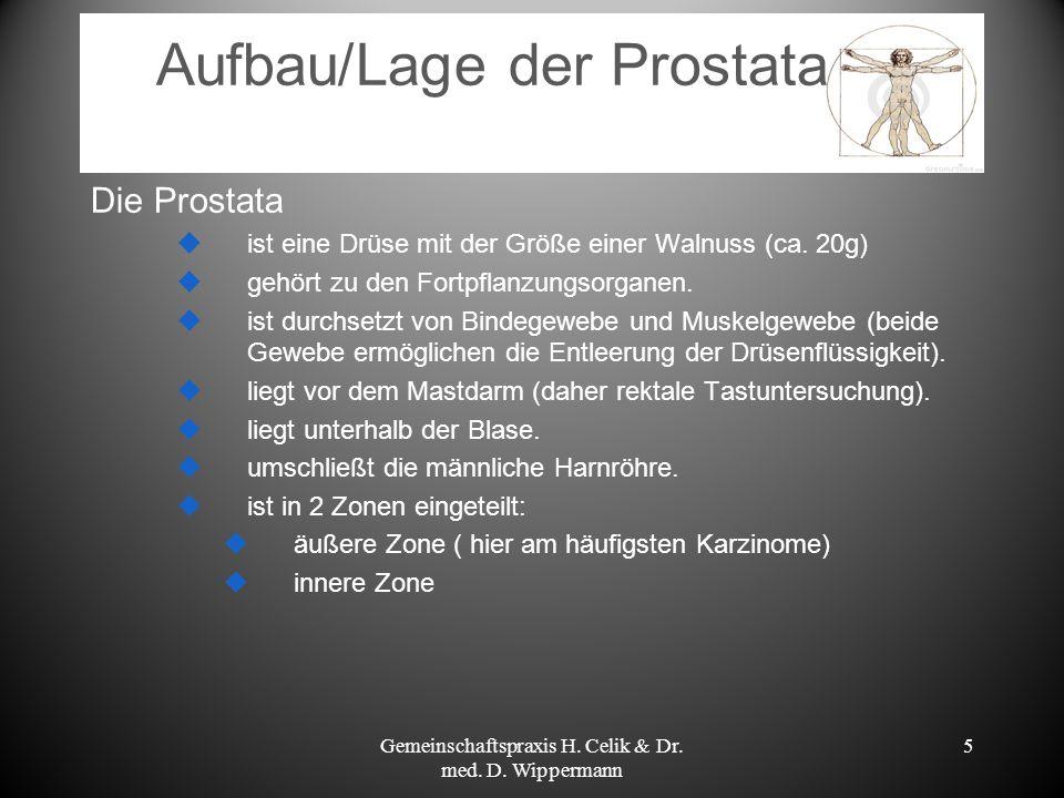 5 Aufbau/Lage der Prostata Die Prostata ist eine Drüse mit der Größe einer Walnuss (ca. 20g) gehört zu den Fortpflanzungsorganen. ist durchsetzt von B