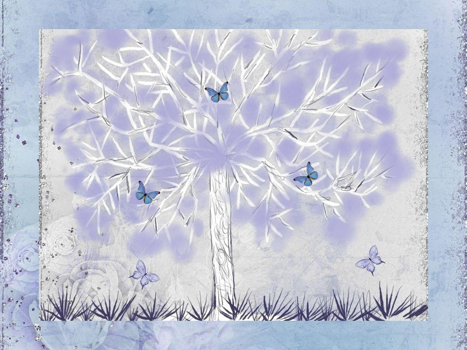 Mein Baum, ich wünsche mir noch viele Jahreszeiten mit dir auf unserer guten Erde und ich will dir etwas verraten.