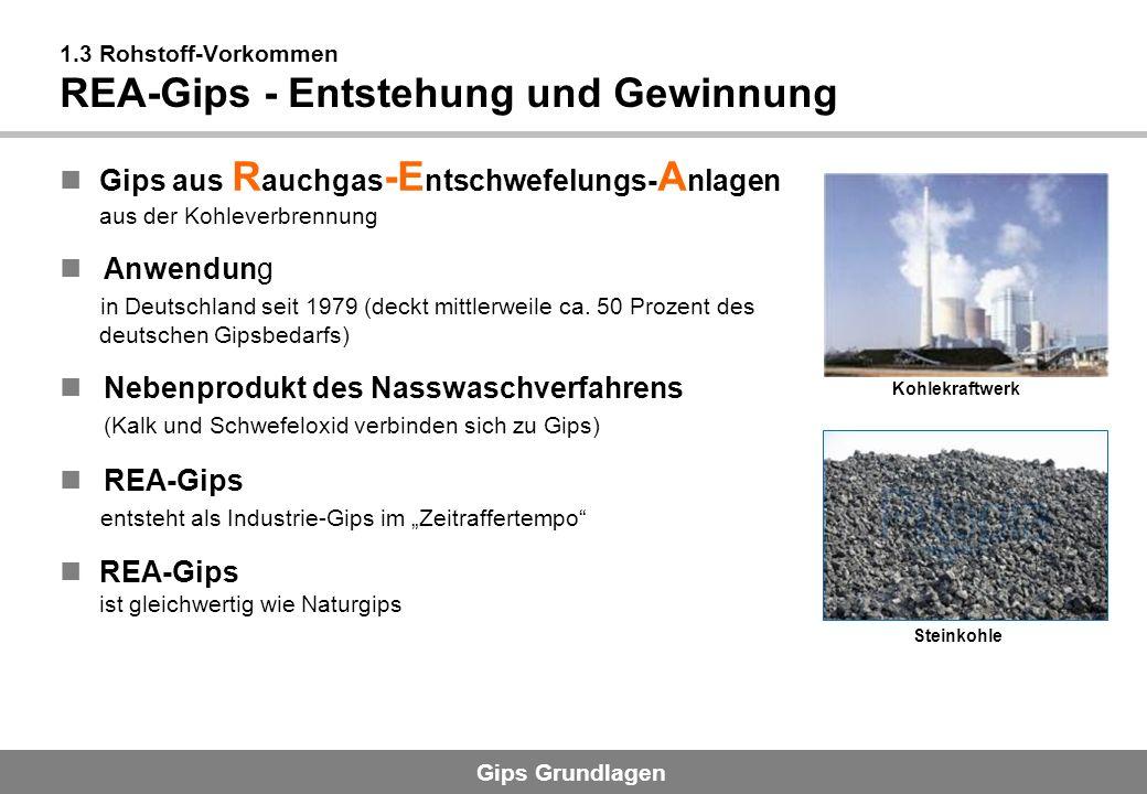 Gips Grundlagen 1.3 Rohstoff-Vorkommen REA-Gips - Entstehung und Gewinnung Gips aus R auchgas -E ntschwefelungs- A nlagen aus der Kohleverbrennung Anw