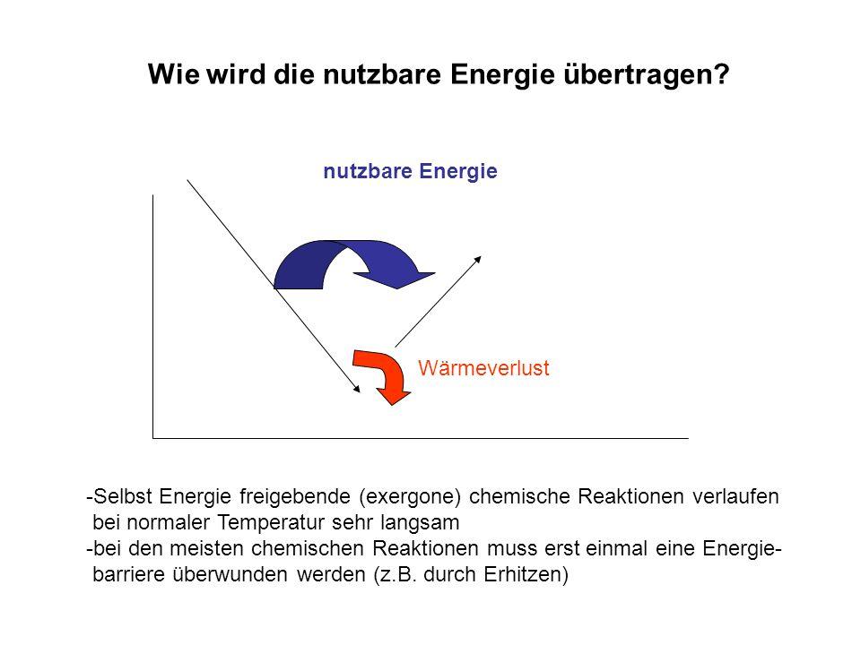 Wärmeverlust nutzbare Energie Wie wird die nutzbare Energie übertragen? -Selbst Energie freigebende (exergone) chemische Reaktionen verlaufen bei norm