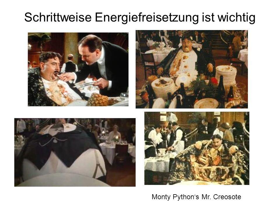 Schrittweise Energiefreisetzung ist wichtig Monty Pythons Mr. Creosote