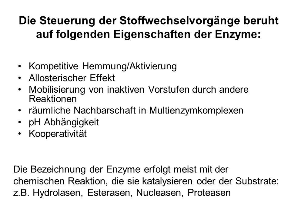 Die Steuerung der Stoffwechselvorgänge beruht auf folgenden Eigenschaften der Enzyme: Kompetitive Hemmung/Aktivierung Allosterischer Effekt Mobilisier