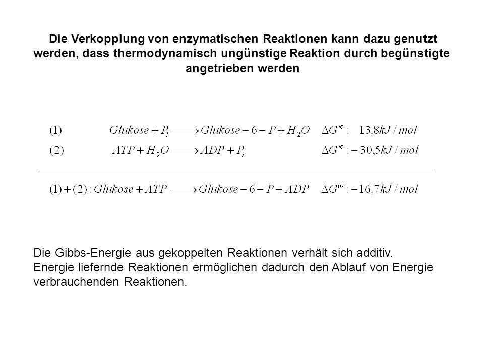 Die Verkopplung von enzymatischen Reaktionen kann dazu genutzt werden, dass thermodynamisch ungünstige Reaktion durch begünstigte angetrieben werden D