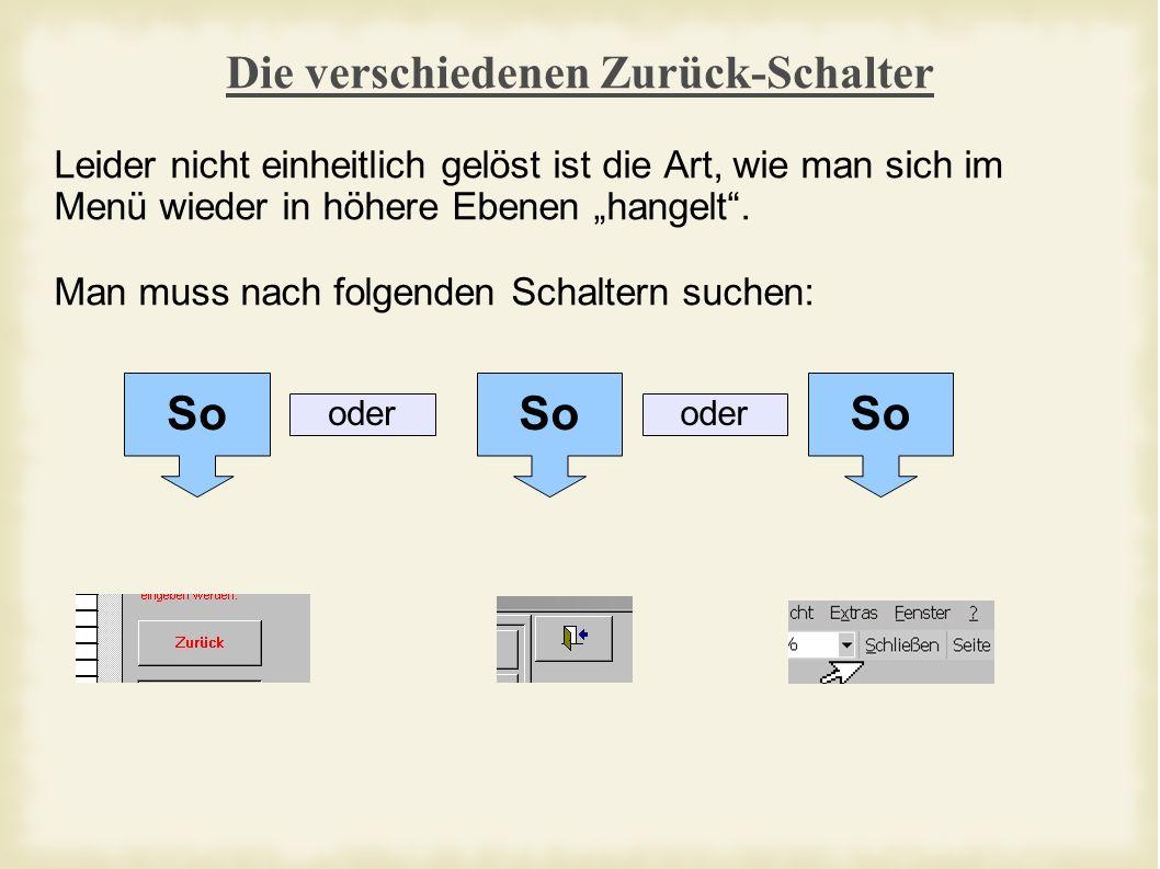 Grundsätzliches Etwas Grundsätzliches zur Arbeitweise des Programms: - Es muss nicht extra gespeichert werden, eingegebene Werte werden automatisch übernommen.