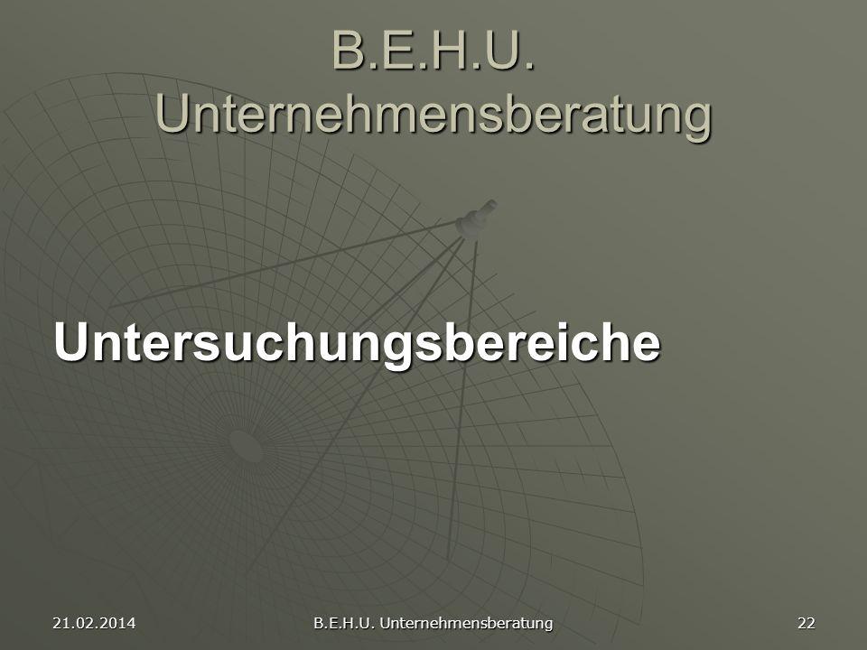 21.02.2014 B.E.H.U. Unternehmensberatung 22 B.E.H.U. Unternehmensberatung Untersuchungsbereiche