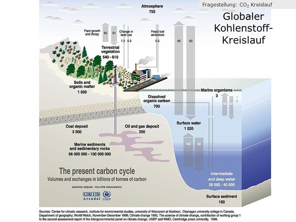 Globaler Kohlenstoff- Kreislauf Fragestellung: CO 2 Kreislauf