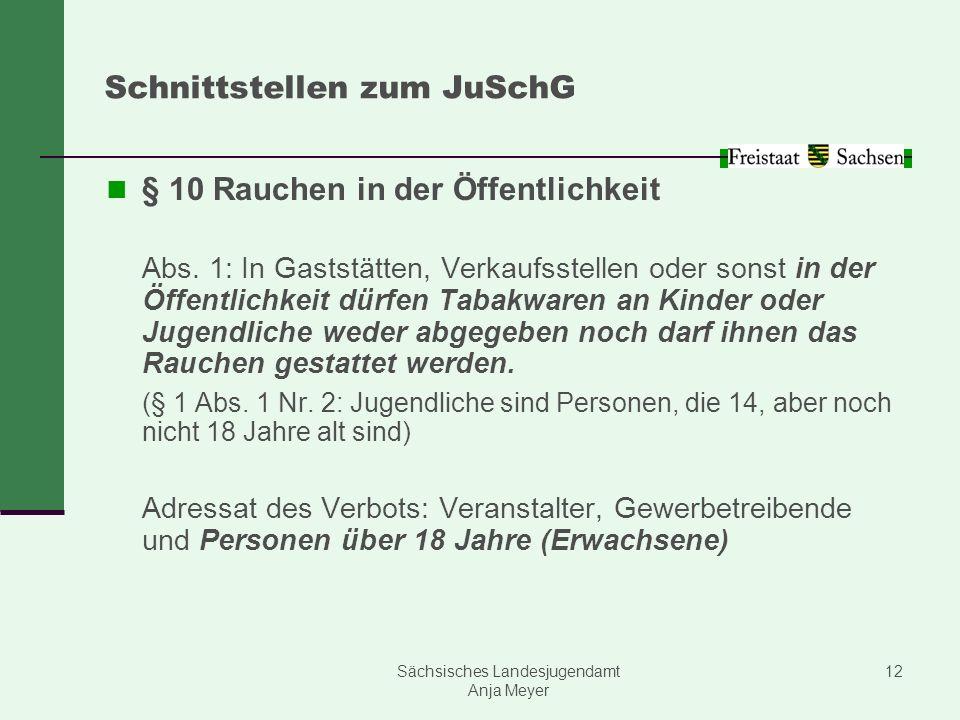 Sächsisches Landesjugendamt Anja Meyer 12 Schnittstellen zum JuSchG § 10 Rauchen in der Öffentlichkeit Abs. 1: In Gaststätten, Verkaufsstellen oder so