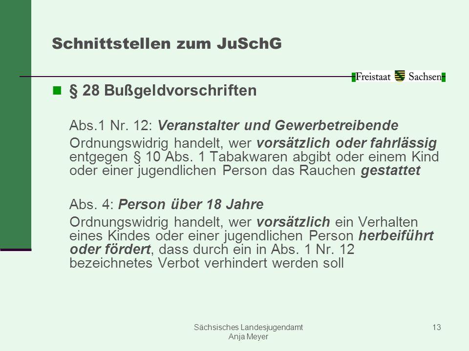 Sächsisches Landesjugendamt Anja Meyer 13 Schnittstellen zum JuSchG § 28 Bußgeldvorschriften Abs.1 Nr. 12: Veranstalter und Gewerbetreibende Ordnungsw