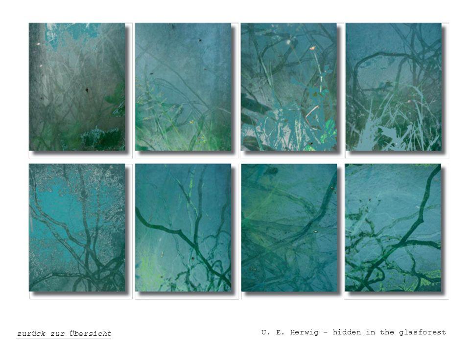 U. E. Herwig – hidden in the glasforest zurück zur Übersicht