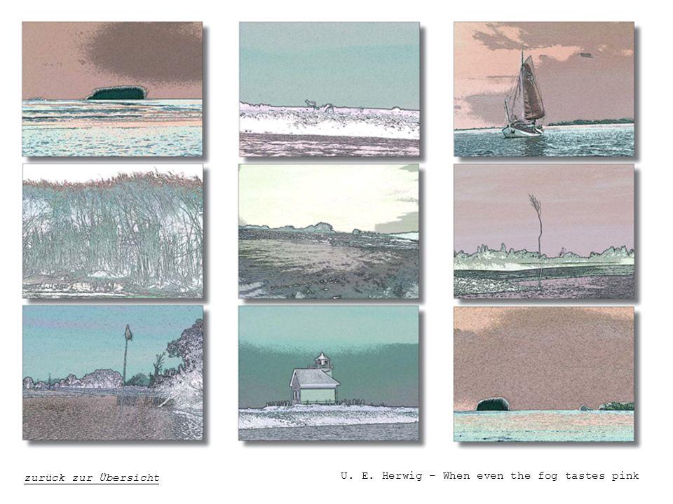 U. E. Herwig – When even the fog tastes pink zurück zur Übersicht