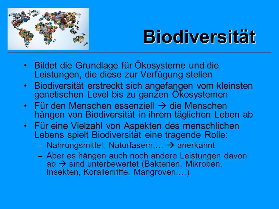 Zustand der terrestrischen Ökosysteme