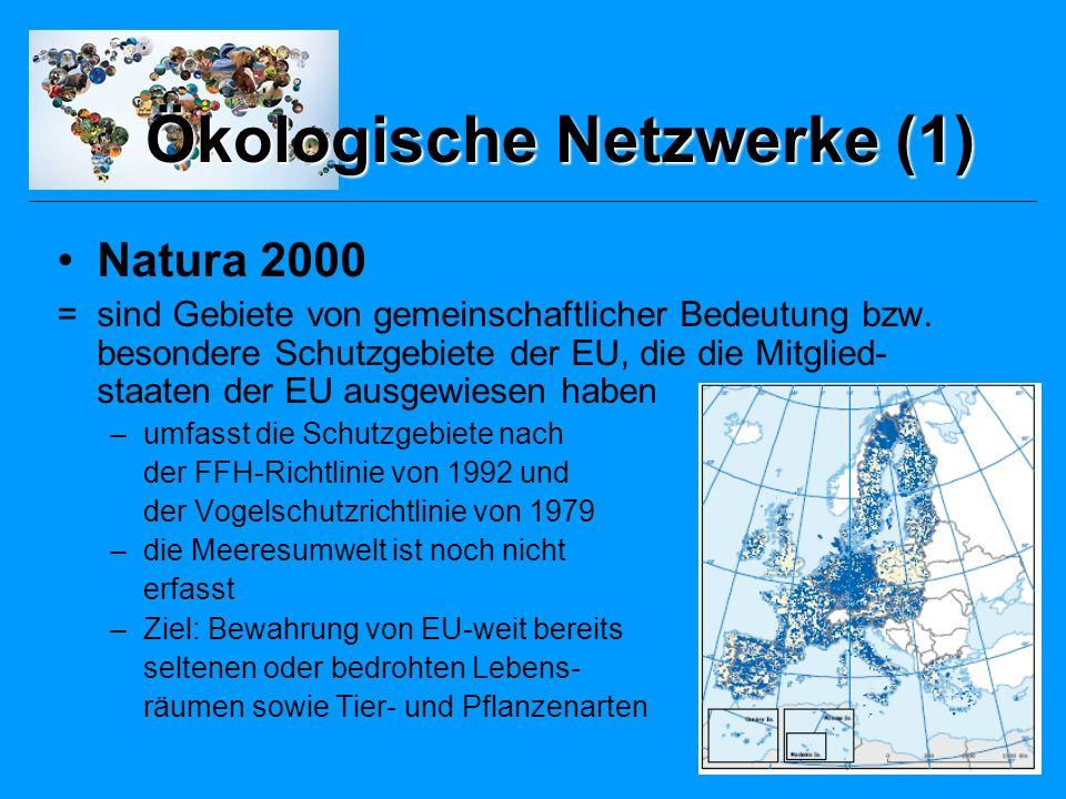 Ökologische Netzwerke (2) PEEN (Gesamteuropäisches ökologisches Netzwerk) = unverbindliches System, dass darauf abzielt die ökologische Verbundenheit quer durch Europa zu fördern (auf gesamteuropäischer Ebene) –fordert die Integration ökologischer Inhalte insbesondere durch die Berücksichtigung räumlich-funktionaler Beziehungen –nur Kerngebiete des PEEN und grosse Flächen die unter staatlicher Regulierung stehen sind als geschützte Bereiche ausgewiesen –z.B.
