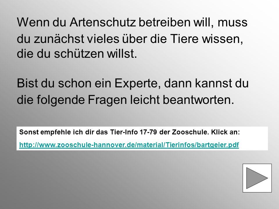 Artenschutz im Zoo Hannover Teste dein Wissen zum Thema >> Bartgeier <<