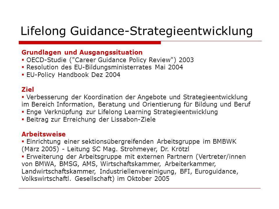 Schritte zu einer nationalen Strategie (1)Begiffsdefinition einheitliches Verständnis herstellen: IBOBB (2)Information über und Analyse der auf europäischer Ebene formulierten Ziele, Werte und Grundsätze (3)Bestandsaufnahme und Bewusstmachung Gesetzliche Verankerungen von Grundwerten und Zielsetzungen (4)Definition der Herausforderungen Außen- (z.B.