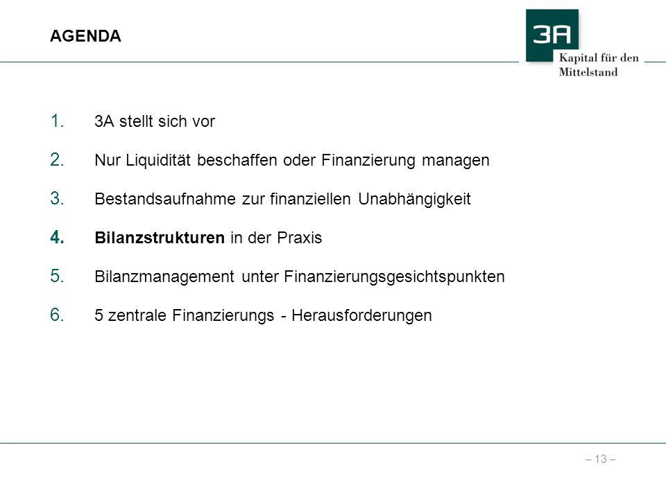 – 13 – 1. 3A stellt sich vor 2. Nur Liquidität beschaffen oder Finanzierung managen 3. Bestandsaufnahme zur finanziellen Unabhängigkeit 4. Bilanzstruk