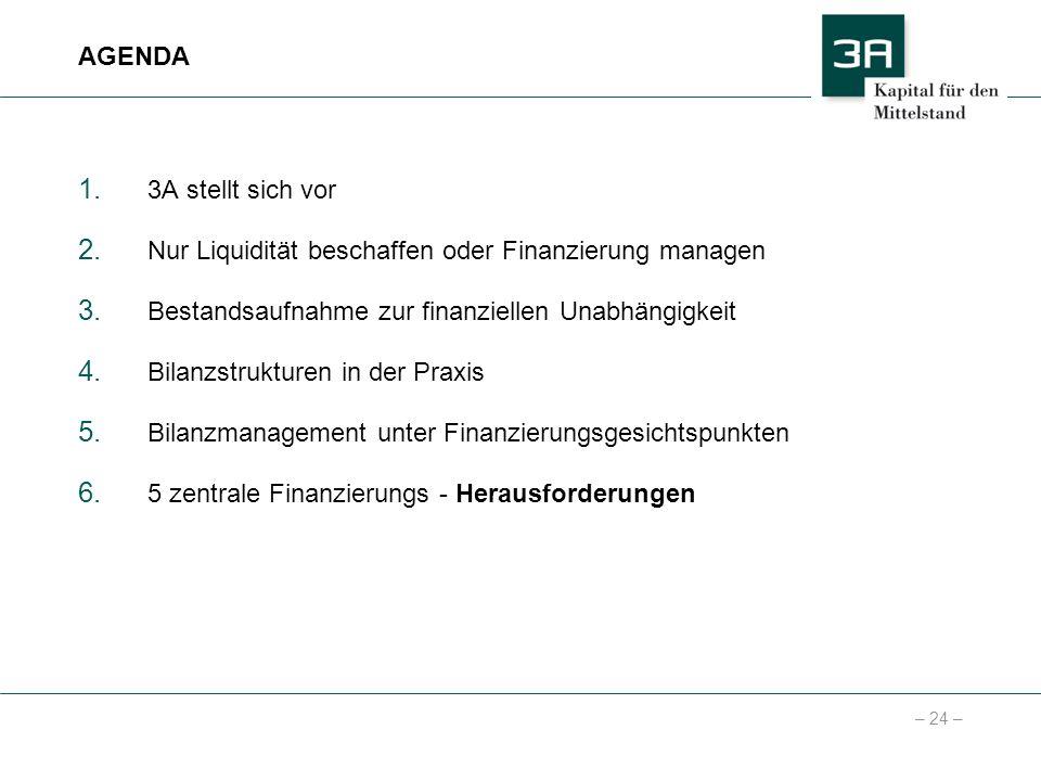 – 24 – 1. 3A stellt sich vor 2. Nur Liquidität beschaffen oder Finanzierung managen 3. Bestandsaufnahme zur finanziellen Unabhängigkeit 4. Bilanzstruk