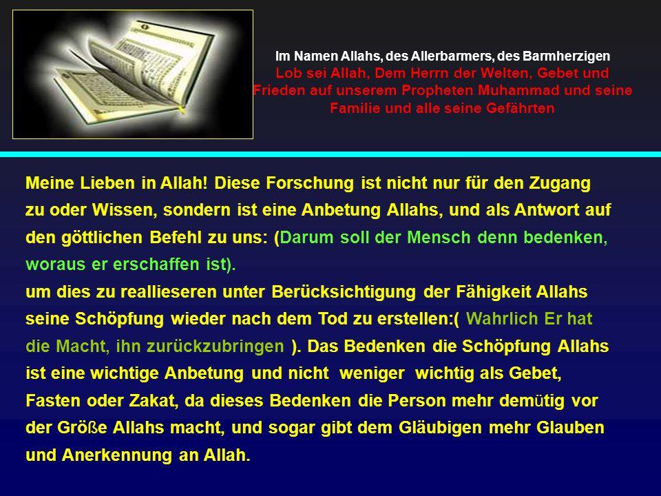 Meine Lieben in Allah! Diese Forschung ist nicht nur für den Zugang zu oder Wissen, sondern ist eine Anbetung Allahs, und als Antwort auf den göttlich