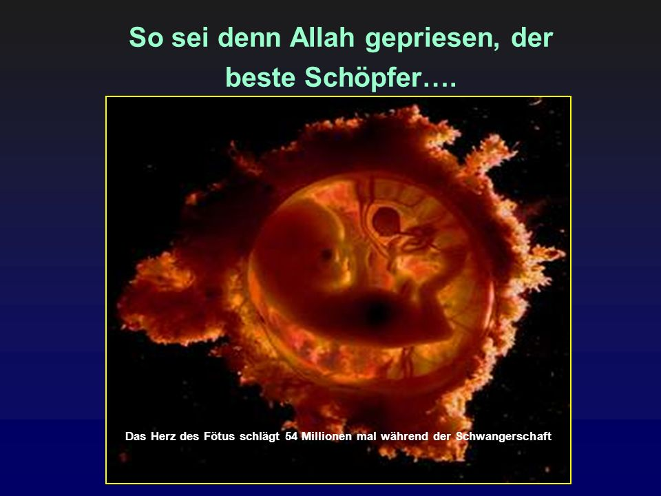 So sei denn Allah gepriesen, der beste Schöpfer…. Das Herz des Fötus schlägt 54 Millionen mal während der Schwangerschaft