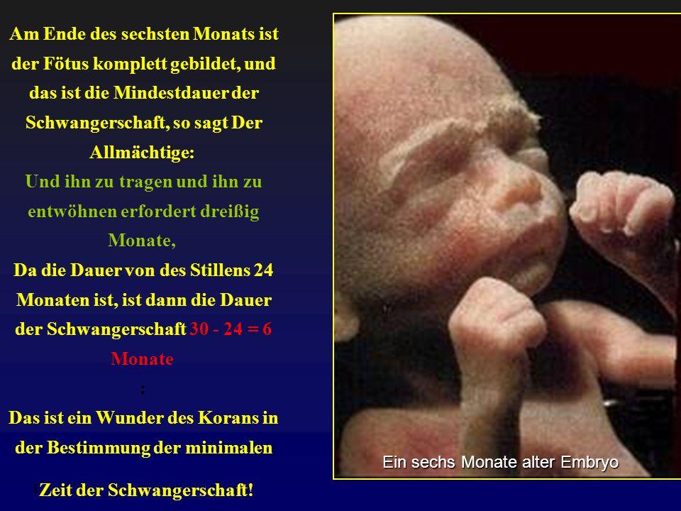 Am Ende des sechsten Monats ist der Fötus komplett gebildet, und das ist die Mindestdauer der Schwangerschaft, so sagt Der Allmächtige: Und ihn zu tra