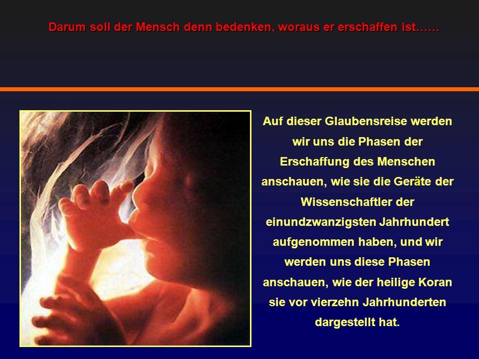Der Spermasamen, aus dem der Mensch erschaffen wurde, ist mit bloßem Auge aufgrund seiner geringen Gr ö ße nicht zu sehen, aber die medizinische Forschung zeigt, dass das Geheimnis des Lebens kleiner als das ist, und was in den Tiefen der Spermien vorhanden ist.