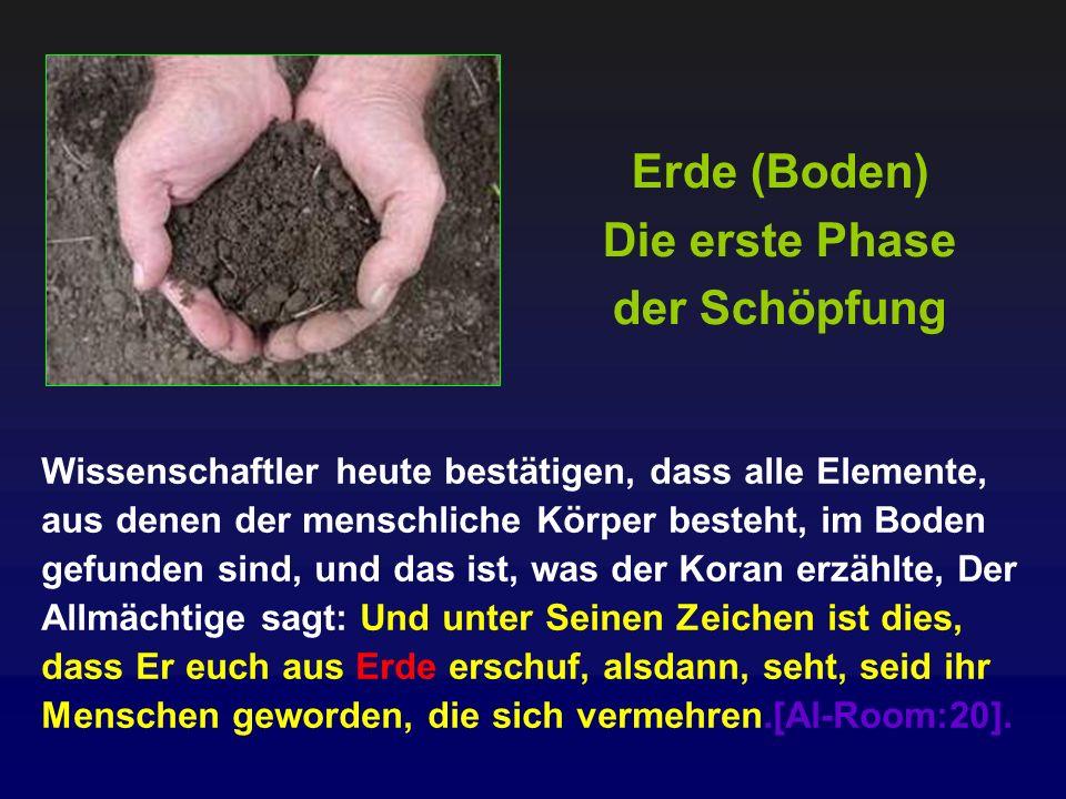 Erde (Boden) Die erste Phase der Schöpfung Wissenschaftler heute bestätigen, dass alle Elemente, aus denen der menschliche Körper besteht, im Boden ge